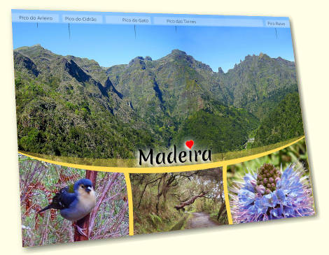 Mountains of Madeira postcard
